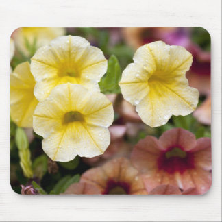 Flowers After Rainfall Mousepad