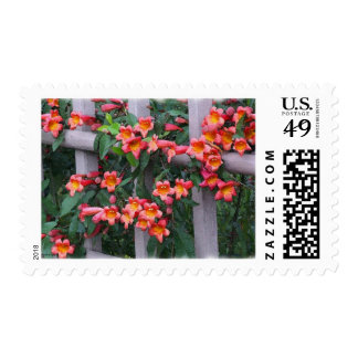 Flowers Along A Fence Postage Stamp