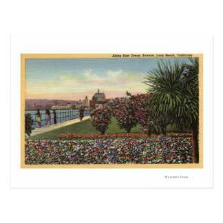 Flowers along East Ocean Avenue Postcard