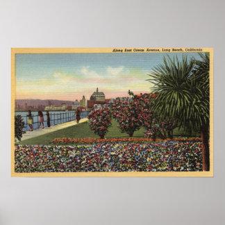 Flowers along East Ocean Avenue Poster
