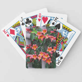 Flowers Along The Fence Bicycle Playing Cards