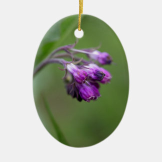 Flowers and blossoms of common comfrey ceramic ornament