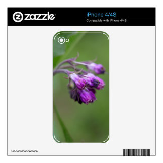 Flowers and blossoms of common comfrey decal for iPhone 4