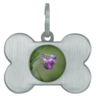Flowers and blossoms of common comfrey pet ID tag