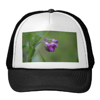 Flowers and blossoms of common comfrey trucker hat
