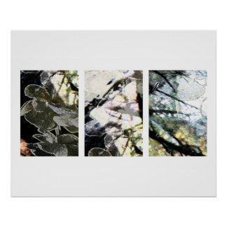 Flowers and Branches Poster