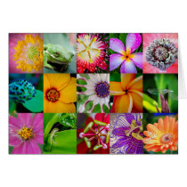 Flowers and Creatures Blank 5x7 Horizontal Cards