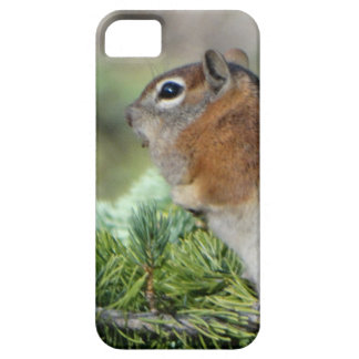 Flowers and cute little Chipmunk iPhone 5 Cover