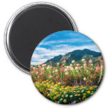 Flowers And Flatirons Refrigerator Magnets