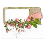 Flowers and frame postcards