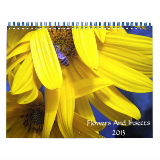 flowers And Insects 2013 Calendar