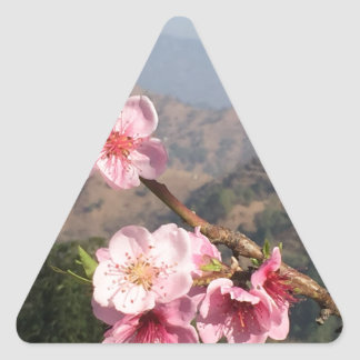 Flowers and mountain view background from India Triangle Sticker