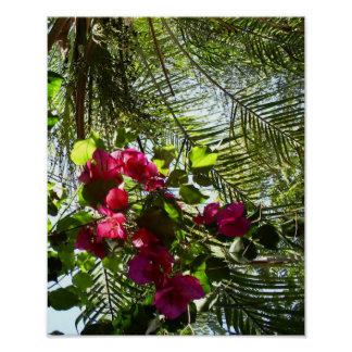 Flowers and Palm Tree Poster