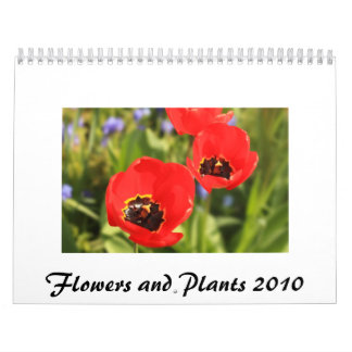 Flowers and Plants 2010 Calendar
