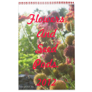 Flowers And Seed Pods in Paintbrush Calendar