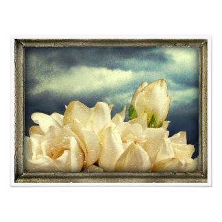 Flowers and Sky Photo Art