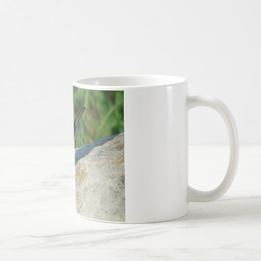 flowers and sparrows classic white coffee mug