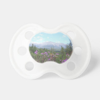 Flowers and the Mountain Pacifier
