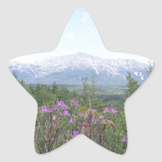 Flowers and the Mountain Star Sticker
