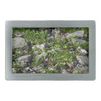 flowers and vines on river rocks florida scene rectangular belt buckle