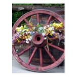 Flowers and Wagon Wheel Postcard