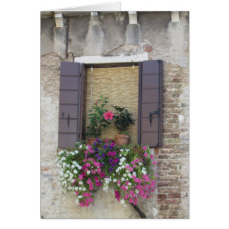 Flowers and Windowsill in Venice, Italy Cards