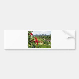 Flowers at Castello di Amorosa Car Bumper Sticker