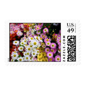 Flowers at Conservatory Garden in East Harlem Stamps