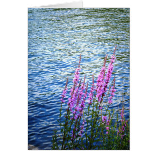 """Flowers at Long Pond"" Card"