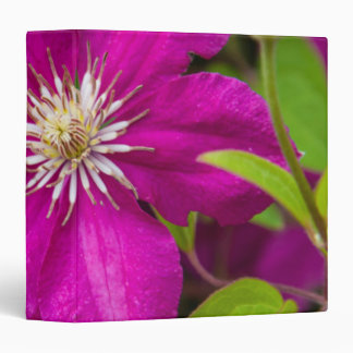 Flowers at Robinette's Apple Haus and Gift Barn 2 Binder