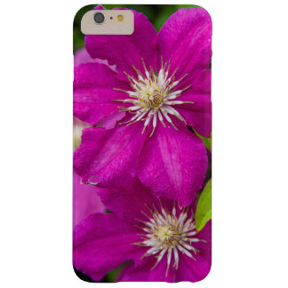 Flowers at Robinette's Apple Haus and Gift Barn 2 Barely There iPhone 6 Plus Case