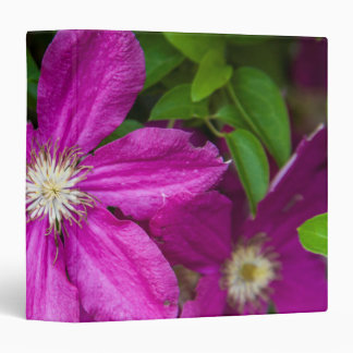 Flowers at Robinette's Apple Haus and Gift Barn Binder