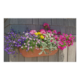 Flowers at the Boathouse Poster