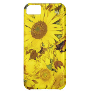Flowers at the farmers market iPhone 5C cover