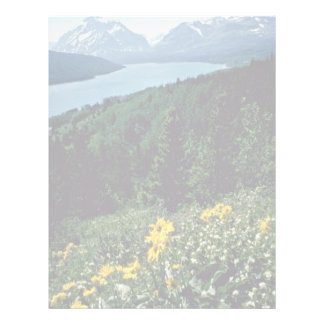 Flowers At Two Medicine Lake - Glacier National Pa Letterhead
