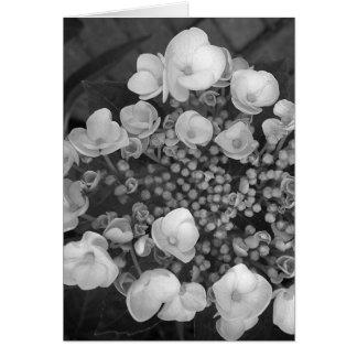 Flowers B&W Card