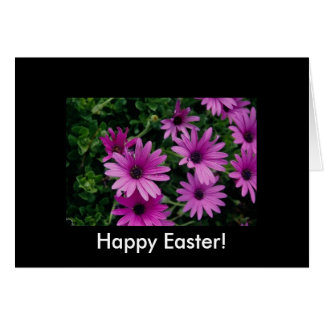 Flowers Beautiful  Purple Petals Card