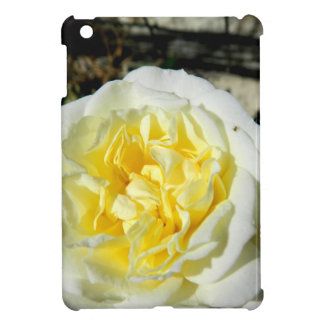 Flowers beautiful white rose iPad mini cases