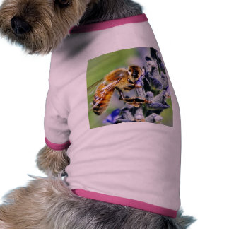 Flowers Bees Dog Clothes