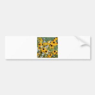 Flowers Black eyed susan's Bumper Sticker