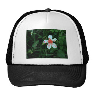 Flowers Bleed Too by C.S Trucker Hat