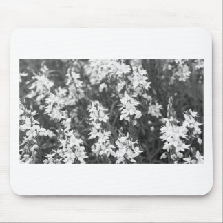 Flowers blossom mouse pad