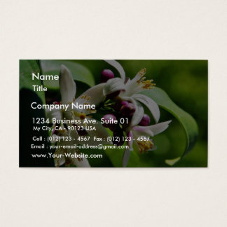 Flowers Blossoms Business Card