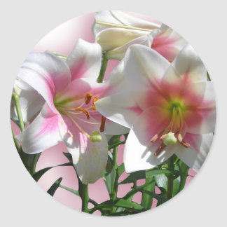 Flowers Blossoms Spring Garden Love Shower Party Classic Round Sticker