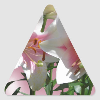 Flowers Blossoms Spring Garden Love Shower Party Triangle Sticker