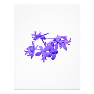 """Flowers Blue Tinted Ground Orchid 8.5"""" X 11"""" Flyer"""