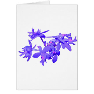Flowers Blue Tinted Ground Orchid Card