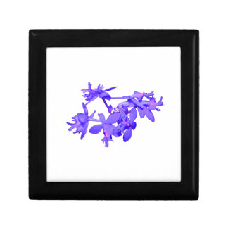 Flowers Blue Tinted Ground Orchid Gift Box