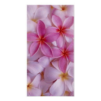 Flowers Bouquet Posters