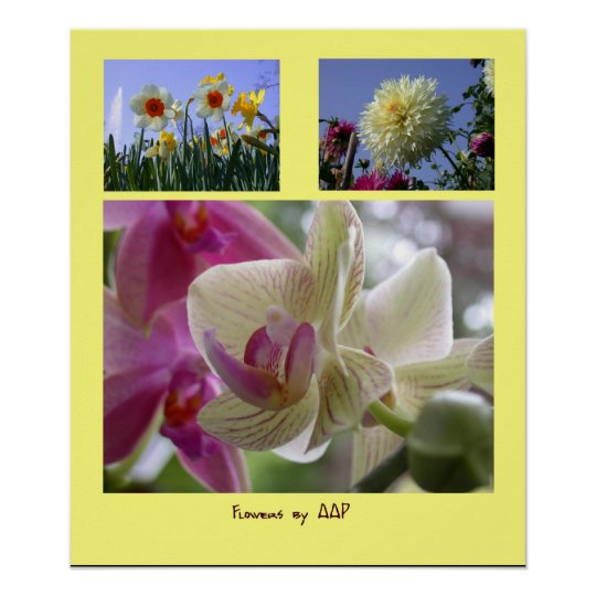 Flowers by AAP photo collage Poster